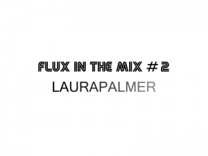 flux-in-the-mix-2-laurapalmer