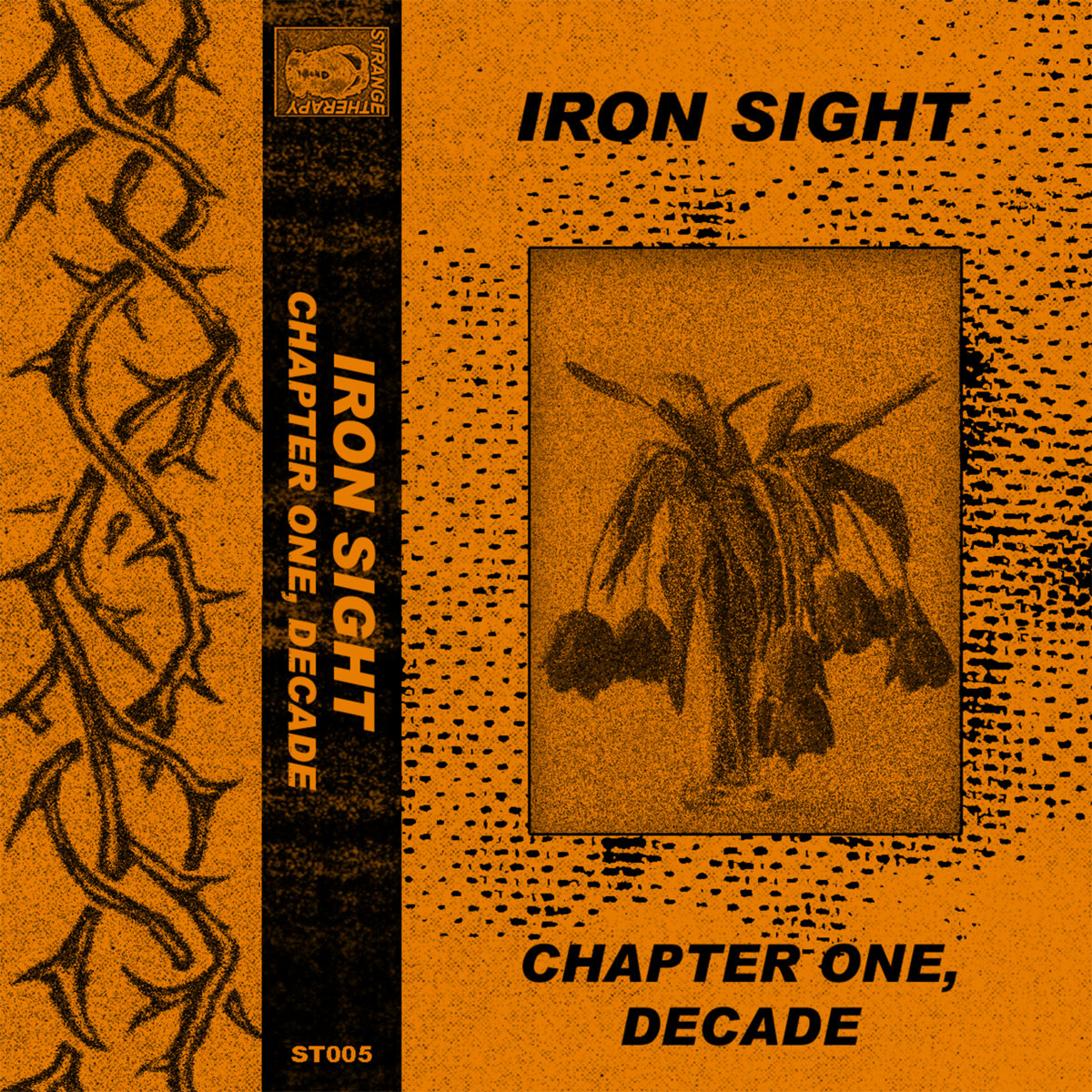 Iron Sight - Chapter One