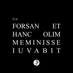 forsan-et-hanc-olim-meminisse-iuvabit